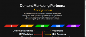 Velocity Content Marketing Partners Infographic Screenshot